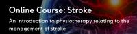 266_stroke1602655306.png